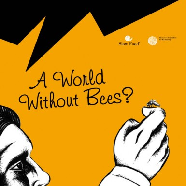 A world without bees?