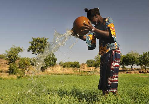 Support Gardens in Africa!