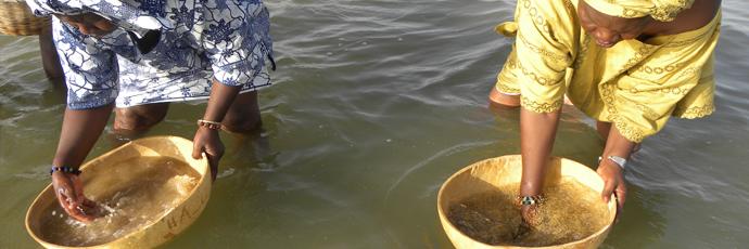 Cuscus salato di miglio dell'isola di Fadiouth