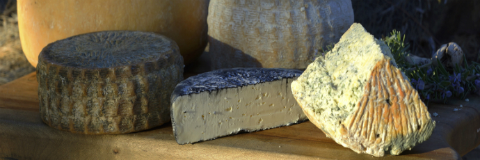 South African Raw Milk Cheeses
