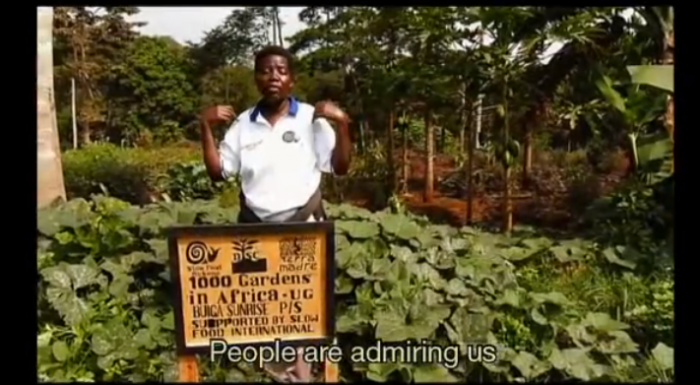 Voices of a Thousand Gardens in Africa