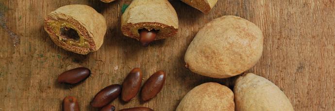 Grande Sertão Barù Nut