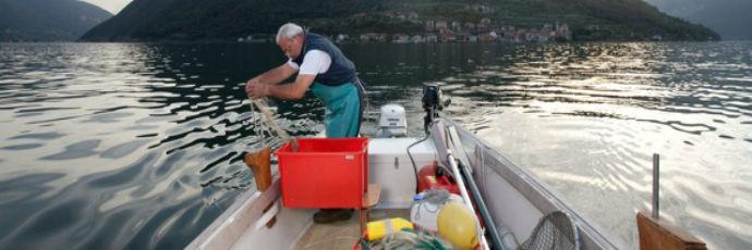 Sardina essiccata tradizionale del lago di Iseo