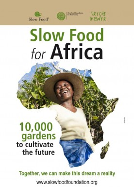 10.000 gardens in Africa  Poster english