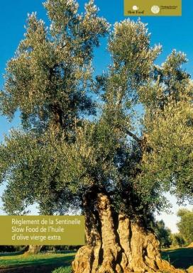 Règlement de la Sentinelle Slow Food de l'huile d'olive vierge