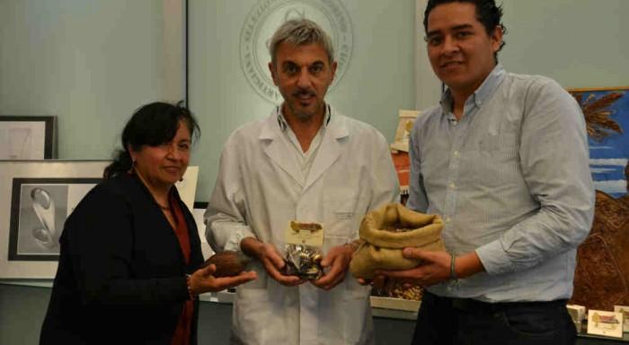 Gobino e il cacao della Chontalpa