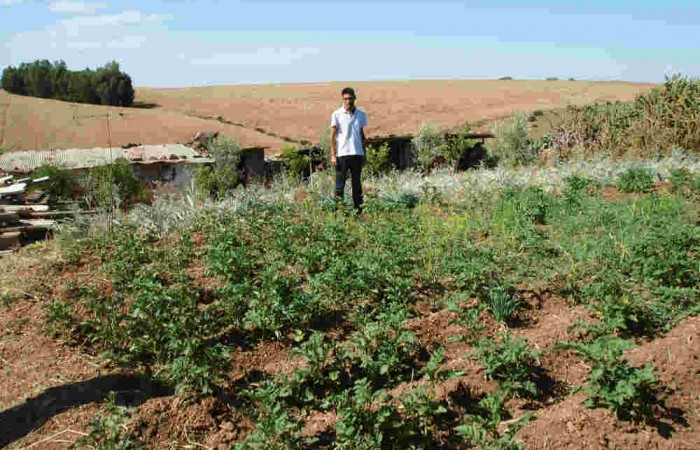 Lambarkien, a Village Without Land… But Rich in Gardens