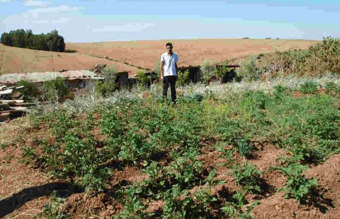Lambarkien, villaggio senza terra…ma ricco di orti