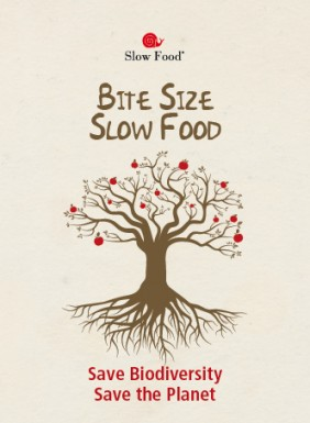 Bite Size Slow Food