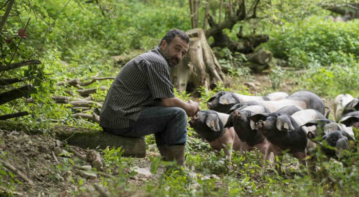 Free in the Forest. The Slow Food Kintoa Basque Pig Presidium