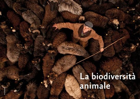 La biodiversità animale