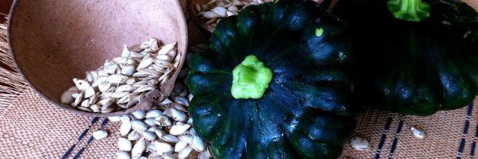 Yucatán Peninsula Pumpkin Seeds