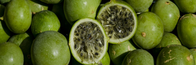 Caatinga Passion Fruit