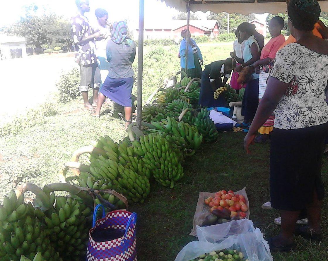 mercato_della_terra_uganda