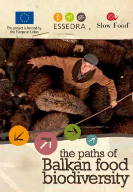 The paths of Balkan food biodiversity