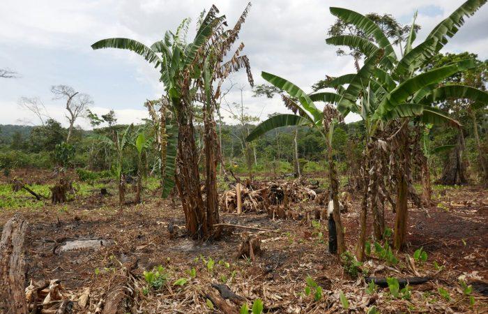 In Uganda, la Fondazione Slow Food e Intesa Sanpaolo per dire stop al Land Grabbing