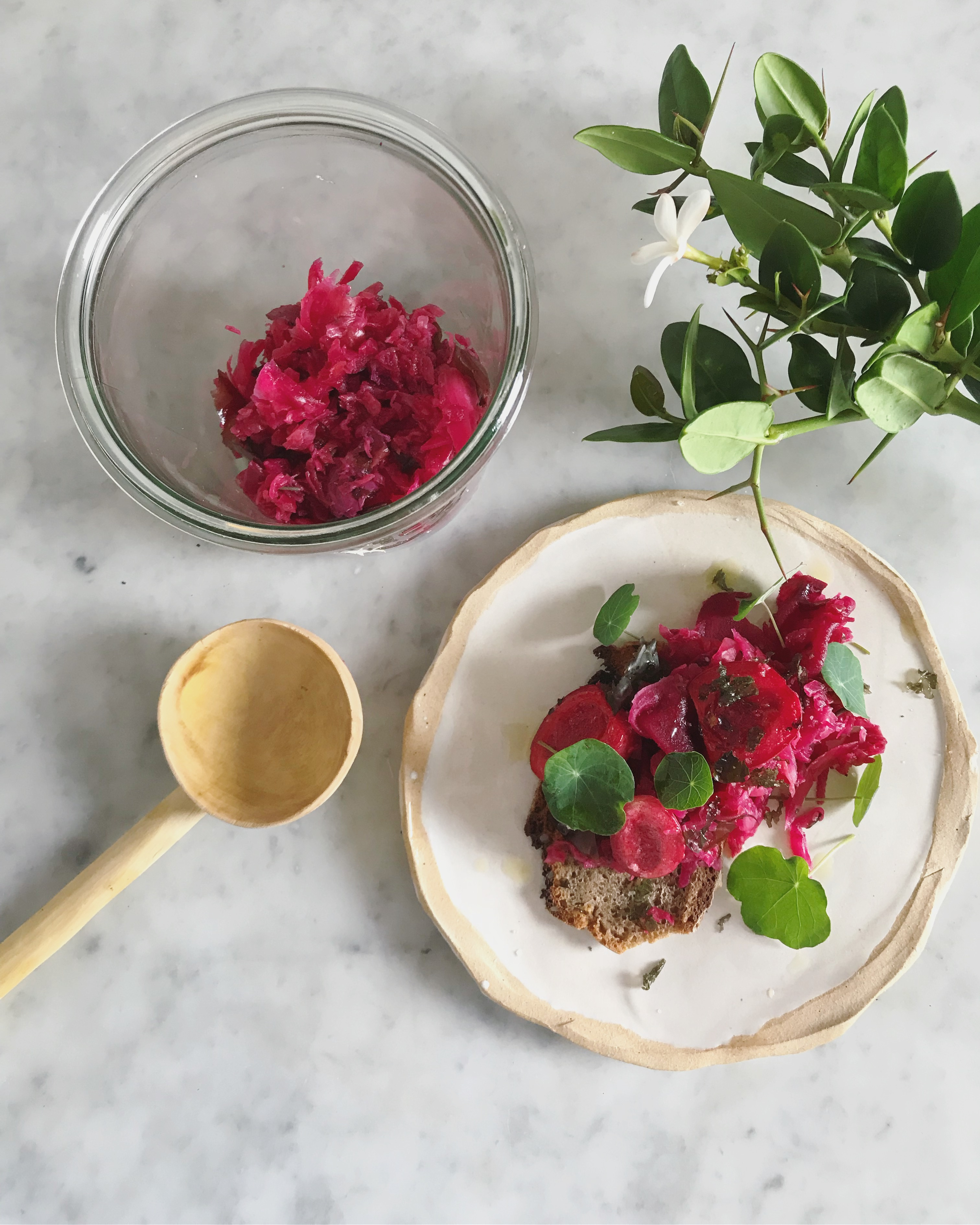 recipe-carissa-berry-kraut-natal-plum-south-african-wild-rosemary-dill-seeds-filippa-harrington