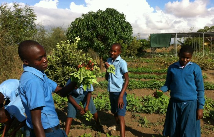 Slow Food Tanzania at Karibu-KiliFair