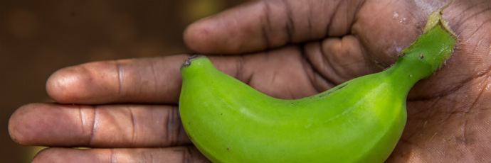 Banana ndiizi