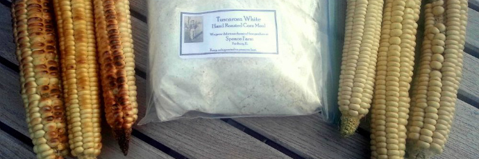 Tuscarora White Corn