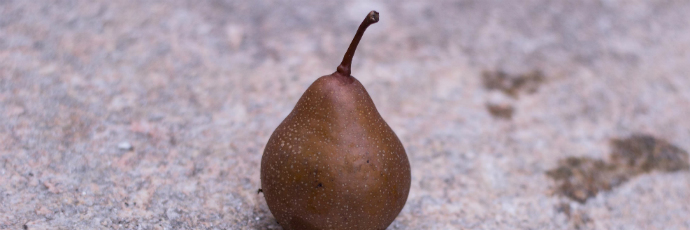 Martin Sec Pear
