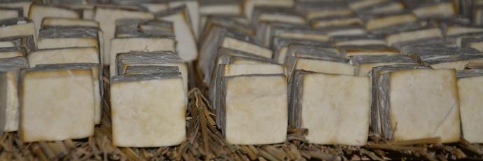Tofu fermentato di Lugu