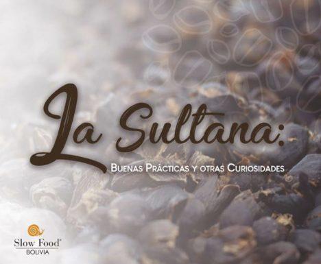 La sultana – Manual