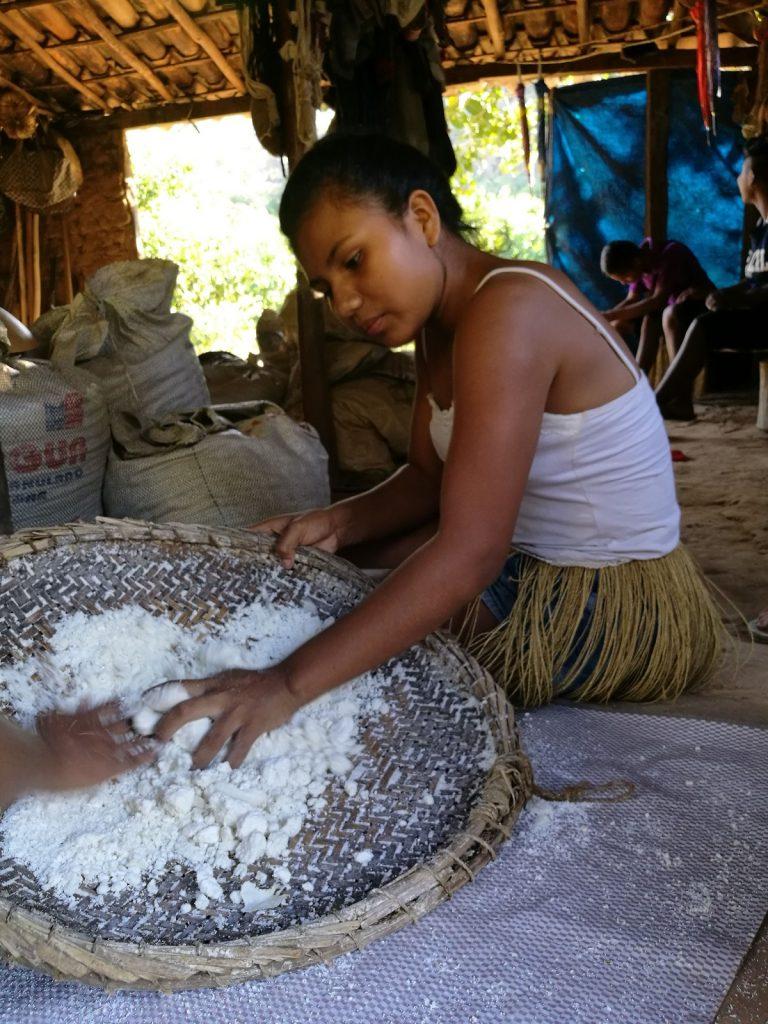 la manioca dei kiriri