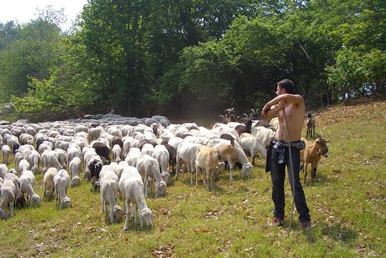 comunità cambiamento pastori