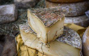 formaggio mercati terra