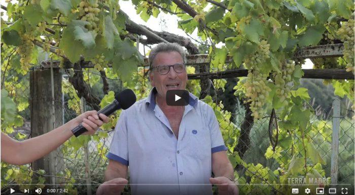 Giovanni Maschietti – L'orticino di Pizzutello della Valle dell'Aniene