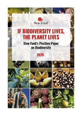 Biodiversity: A Position Paper